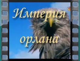 Империя орлана
